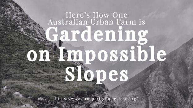 Steep slope gardening