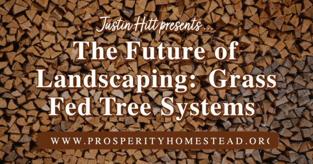 Banner, The Future of Landscaping: Grass Fed Tree Systems